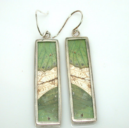 Sage and Cream Butterfly Earrings