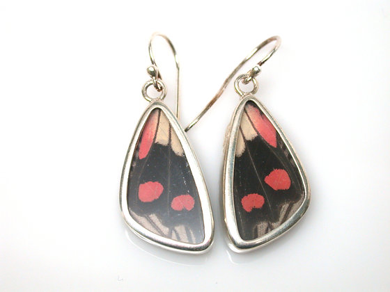 Red, Cream, and Black Butterfly Earrings