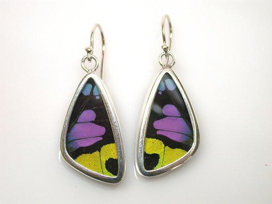 Purple, Yellow, Blue, Green, and Black Butterfly Earrings