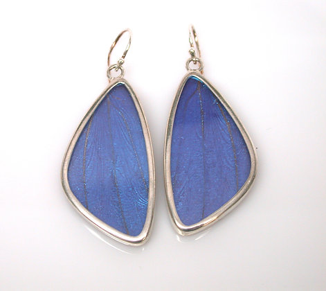 Blue Morpho Butterfly Earrings