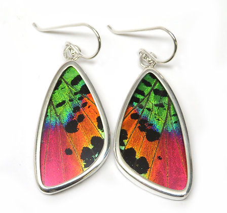 Medium Sunset Moth Earrings