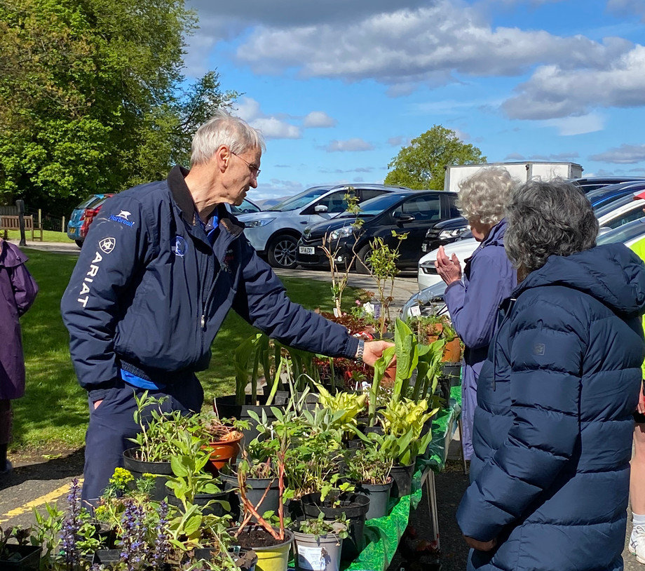 Plant Sale   May 2021
