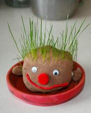 grass head.jpg