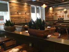 Reclaimed Pine paneling