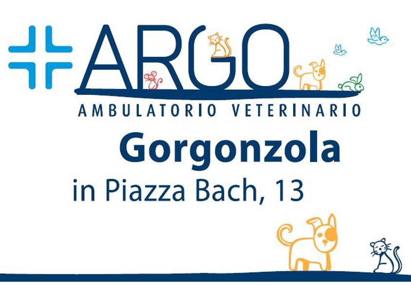 Argo Rettangolare.jpg