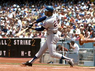 Countdown to Mets Fantasy Camp 28 Days to Go.