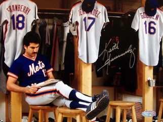 Countdown to Mets Fantasy Camp 17 Days to Go.