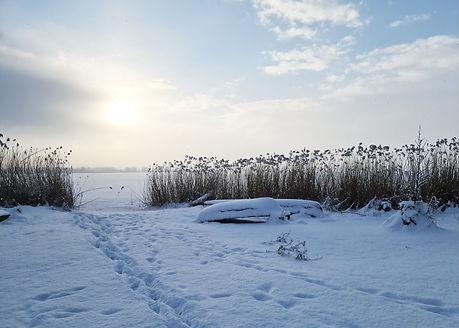 Darzowice zima2a.jpg