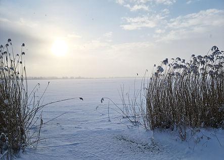 Darzowice zima1a.jpg