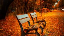 Property Management | Autumn