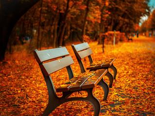 Property Management   Autumn