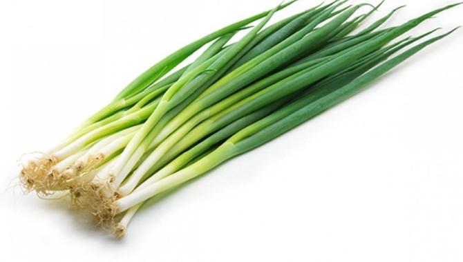 Beneficios Saludables del Cebollín