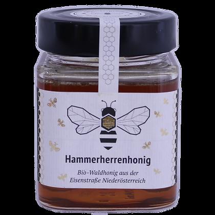 BIO Hammerherrenhonig
