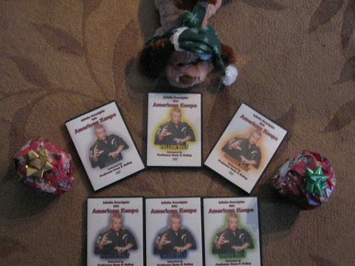 Kenpo Oversights DVD Series by Sean Kelley