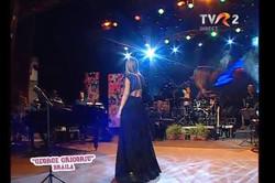 Music Festival - Europe TV
