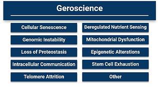 geroscience.JPG