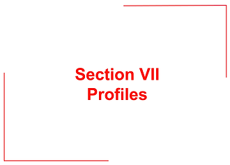 Sections I-VII (38).png