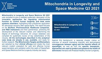 mitochondria_edited.jpg