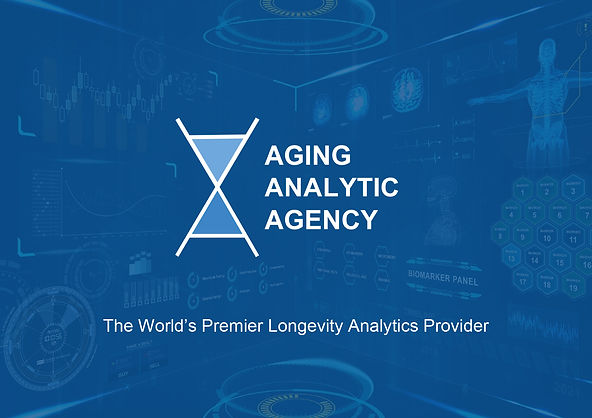 Aging Analytics Agency Summary-1.jpg