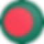 bangladesh-flag-button-round-large.png