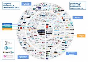 Interactive-Mind-Map-Longevity-Industry-