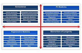 Classification Framework.png