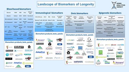 2. Longevity Biomarkers Sector Distribut