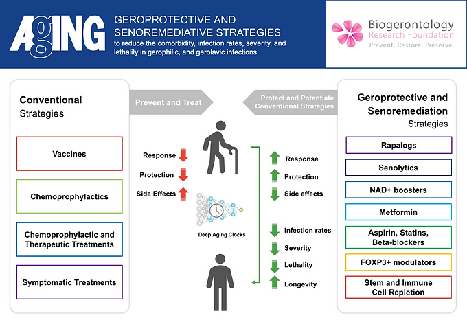 Longevity and AI Scientist Proposes a Strategy and Clinical Trials for Geroprotectors and Deep Immunological Aging Clocks to Combat COVID-19