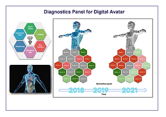Diagnostics Panel for Digital Avatar