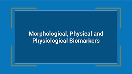 Morphological.png