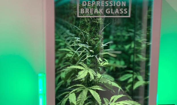 In Case of Depression