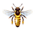 bee_PNG74737.png