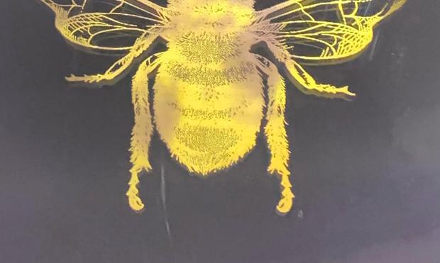 Bee Mindful