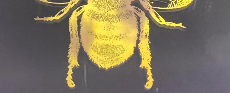 Bee Mindful