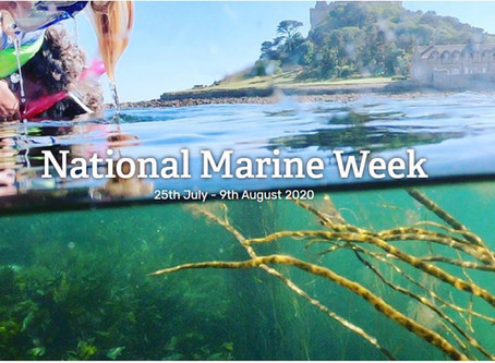 National Marine Week starts today!