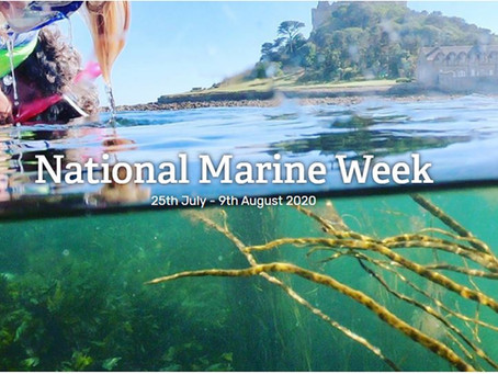 National Marine Week starts today!