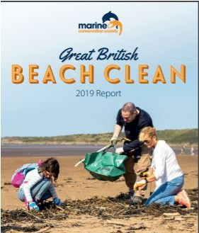 The Great British Beach Clean results are in!