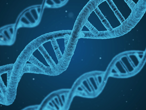 Genetic incompatibility in the couple