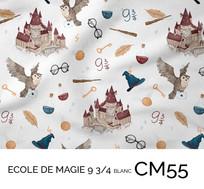 CM55.jpg