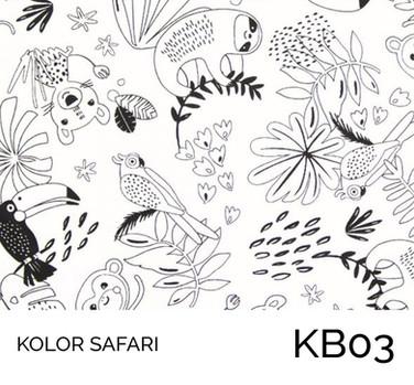 KB03.jpg