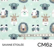 CM62.jpg