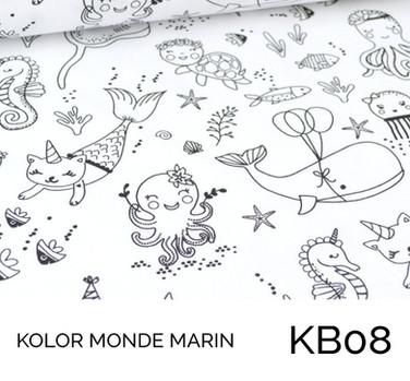KB08.jpg