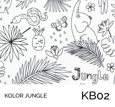 KB02.jpg