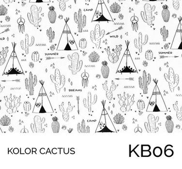 KB06.jpg
