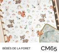 CM65.jpg