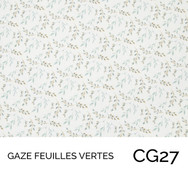 CG27.jpg