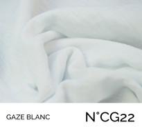 CG22.jpg