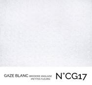 CG17.jpg