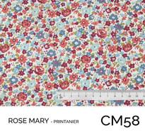 CM58.jpg