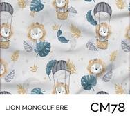 CM78.jpg